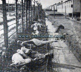 Karissas European Adventure: Dachau Concentration Camp